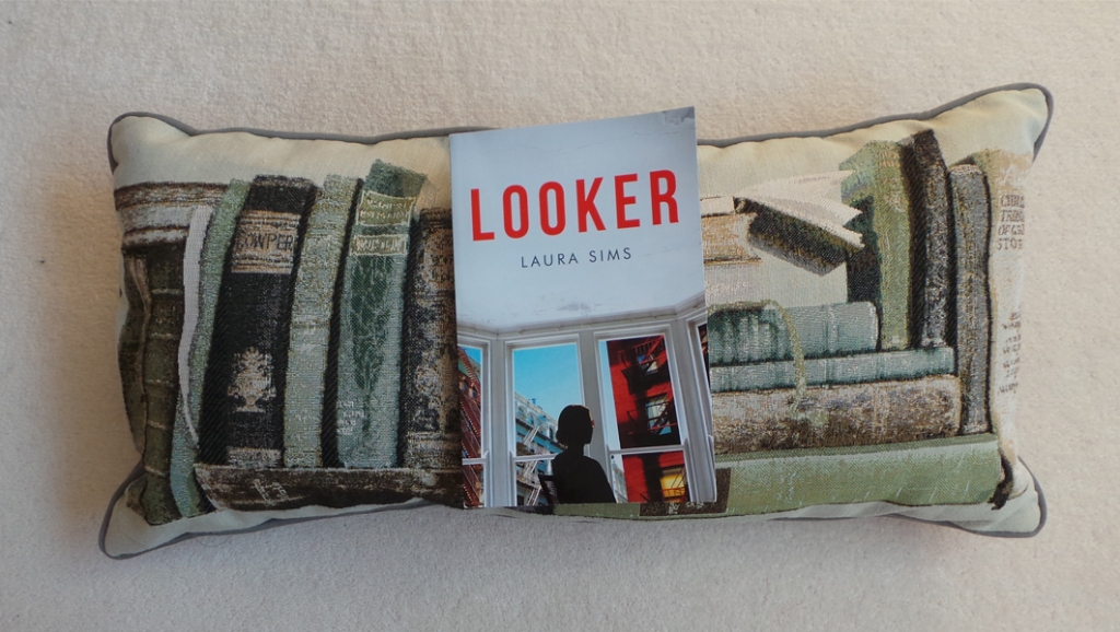 Book review: Looker by Laura Sims